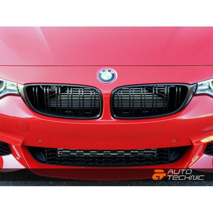 Autotecknic Bmw Replacement Abs Front Grilles Dual Slats